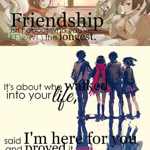 Anime Quotes About Friendship Delectable Anime Quotes About Friendship 12  Quotesbae