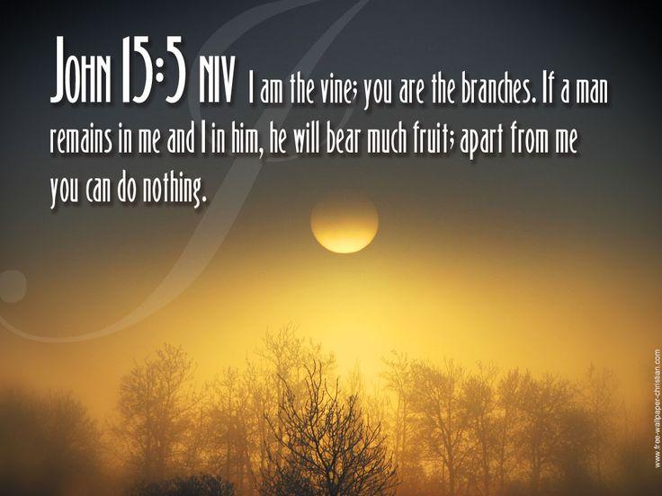 Beautiful Bible Inspirational Quotes About Life 17 Design