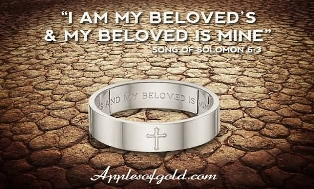 Best Bible Quotes About Love Unique 20 Bible Quotes On Love And Marriage Images  Quotesbae