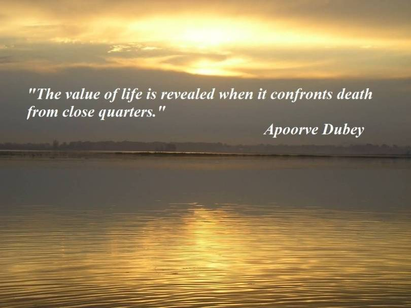 Buddhist Quotes On Death Enchanting 20 Buddha Quotes On Death And Life Pictures & Pics  Quotesbae