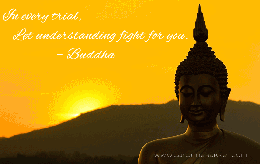 Buddha Quotes On Death And Life Pleasing Buddha Quotes On Death And Life 13  Quotesbae