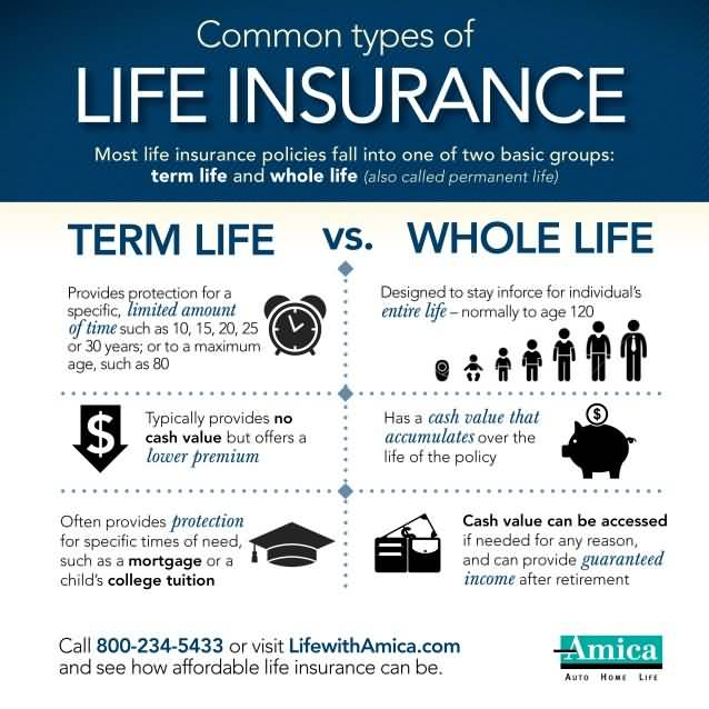 Whole Term Life Insurance Quotes Best 20 Cheap Whole Life Insurance Quotes & Images  Quotesbae