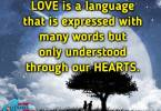 Expressions Of Love Quotes 06
