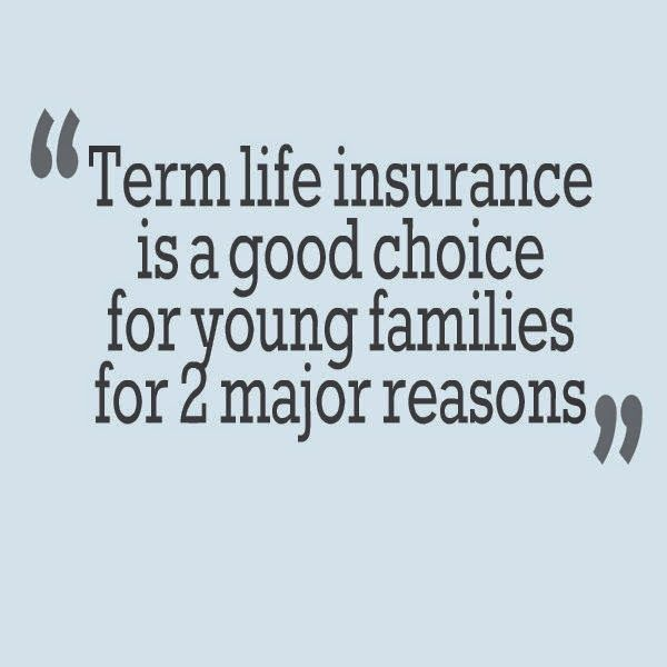 Term Life Quote Delectable Fixed Term Life Insurance Quotes 03  Quotesbae