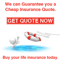 Get Life Insurance Quotes Fascinating Get Life Insurance Quote 17  Quotesbae
