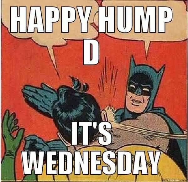 Hilarious wednesday hump day meme picture