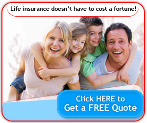 Instant Term Life Insurance Quote Extraordinary Instant Term Life Insurance Quote 15  Quotesbae