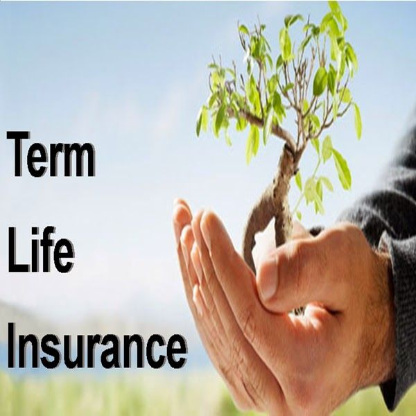 Instant Term Life Insurance Quotes Online 06