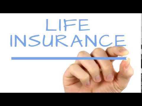 Joint Term Life Insurance Quotes Gorgeous Joint Term Life Insurance Quotes 13  Quotesbae