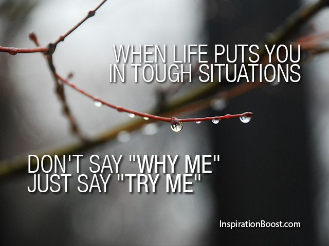 Life Challenge Quotes Amusing Life Challenge Quotes 17  Quotesbae