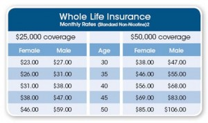 Life Insurance Compare Quotes Captivating Life Insurance Comparison Quotes 06  Quotesbae