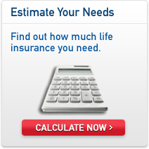 Life Insurance Quote Calculator Inspiration Life Insurance Quote Calculator 17  Quotesbae