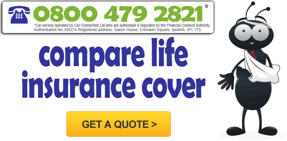 Life Insurance Quote Comparison Prepossessing Life Insurance Quotes Comparison 04  Quotesbae