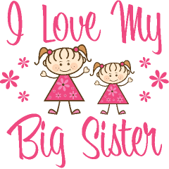 Love My Big Sister Quotes Extraordinary Love My Big Sister Quotes 11  Quotesbae