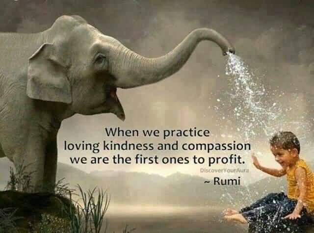 Loving Kindness Quotes Amusing 25 Loving Kindness Quotes Sayings Images & Photos  Quotesbae