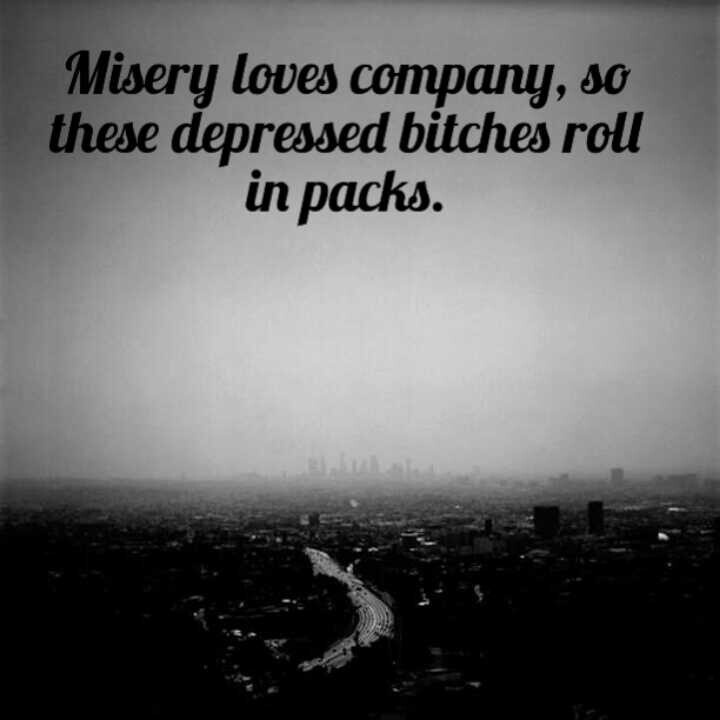 Misery Loves Company Quotes Magnificent Misery Loves Company Quotes 15  Quotesbae