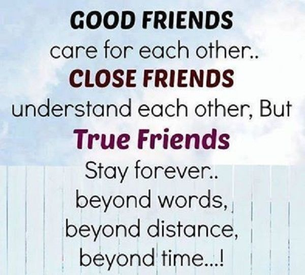 Quotes About Close Friendship Bonds Magnificent Quotes About Close Friendship Bonds 02  Quotesbae