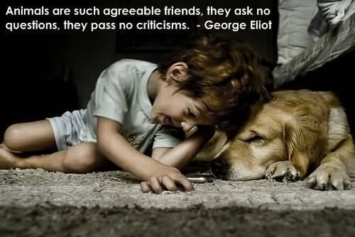 Quotes About Dogs And Friendship 05