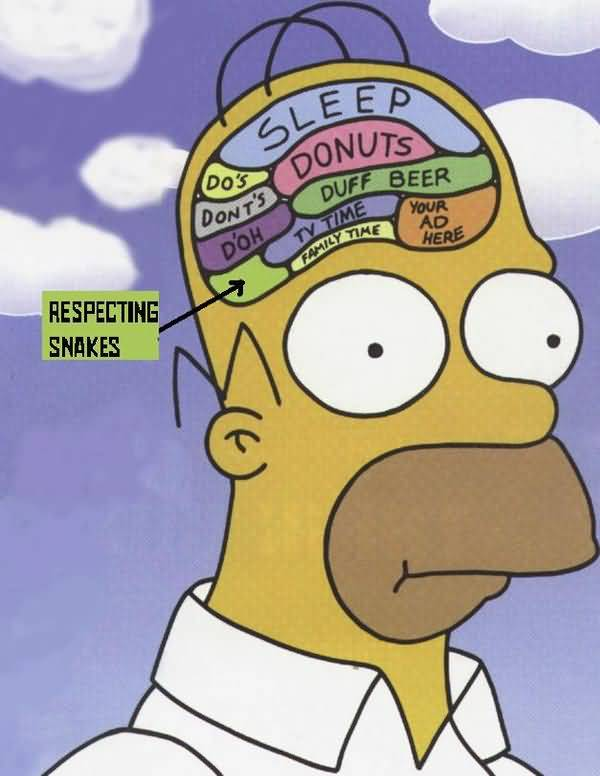 Very funny homer simpson drooling picture memes