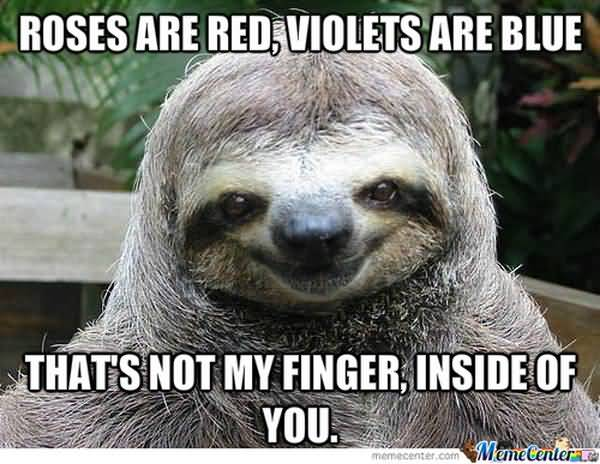 Amusing rapist sloth meme image