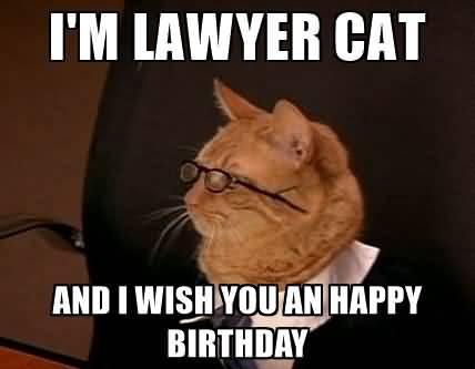 Lawyer Birthday Meme Joke Image 15