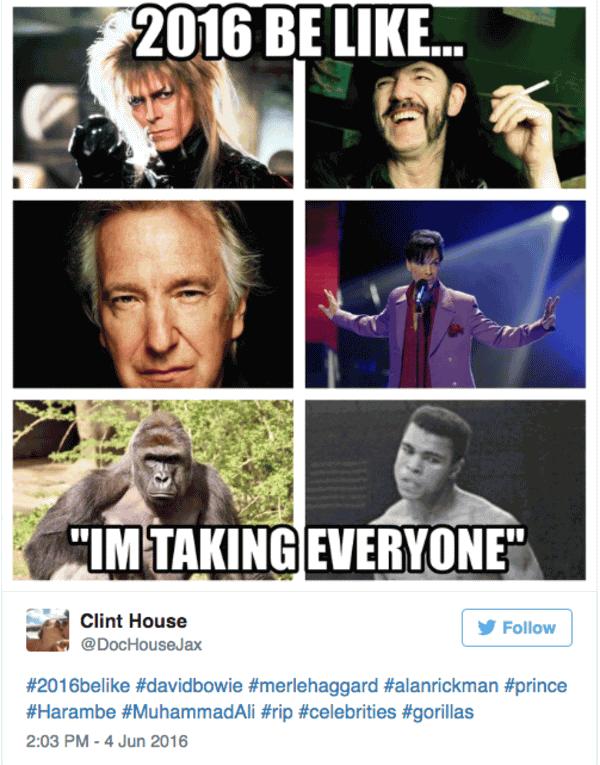 Memes About 2016 Funny Image Photo Joke 02