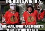 St Louis Blues Meme Funny Image Photo Joke 01