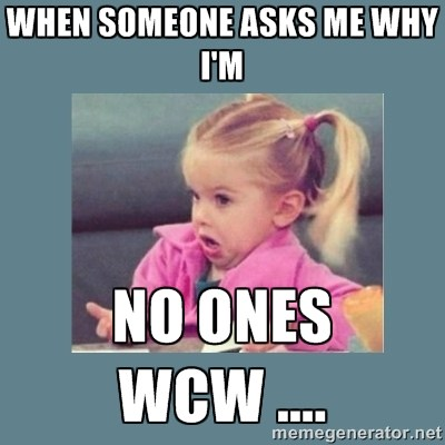 47 Top WCW Meme Images Photos Jokes & Pictures | QuotesBae