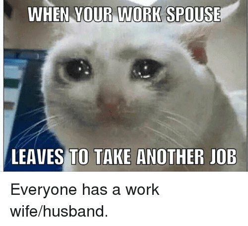 Funny Meme For Wife : Top work wife meme jokes images photos quotesbae