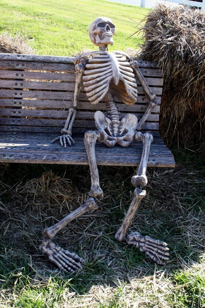 Waiting Skeleton Meme Funny Image Photo Joke 12