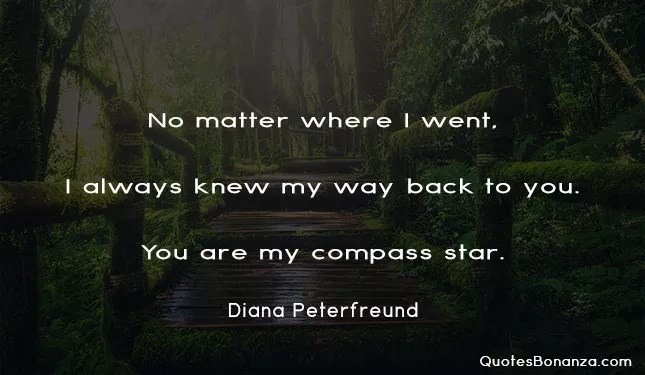 no matter where i went i always knew my way back to you you are my compass star