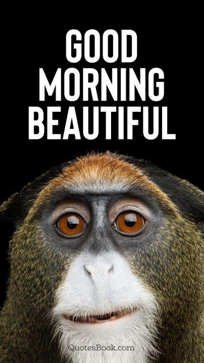good morning meme cute animals