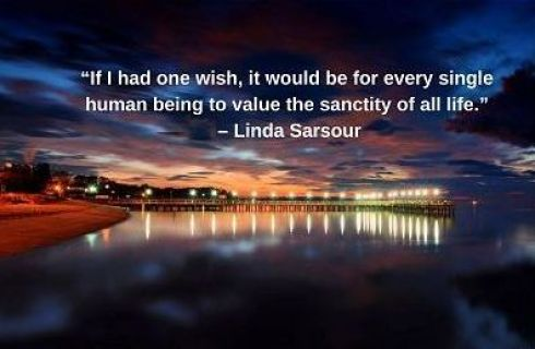 linda sarsour quotes on life