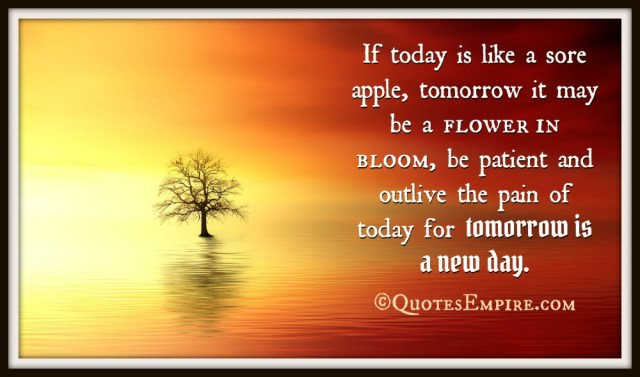 If today is like a sore apple, tomorrow it may be a flower in bloom, be patient and outlive the pain of today for tomorrow is a new day.