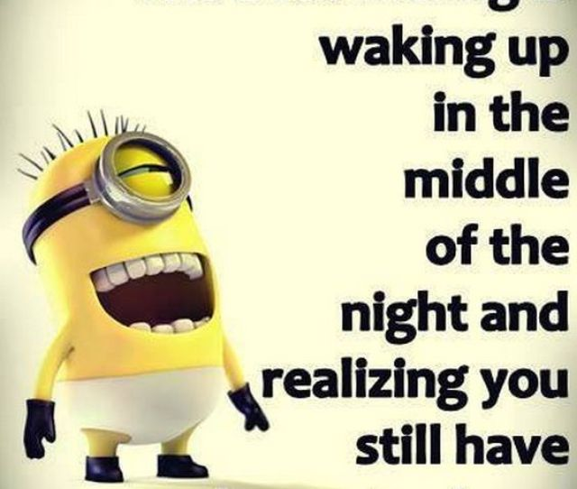 Funniest Minion Quotes And Sayings Minion Funny Memes