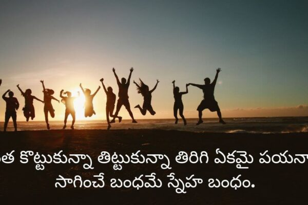 Love And Friendship Inspirational Quotes In Telugu-1_Image Source Google