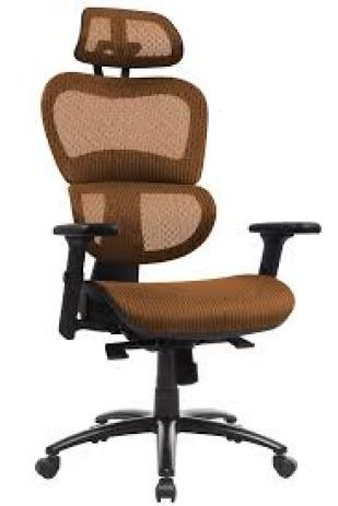 Ergoal Chair Reviews