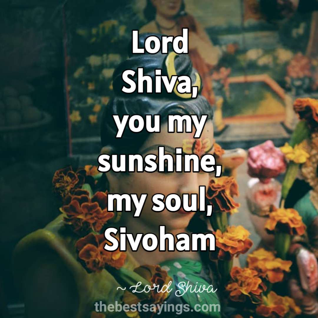 51 Best Lord Shiva Quotes and Sayings