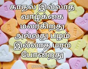143 Best Love Quotes in Tamil Express Your Love