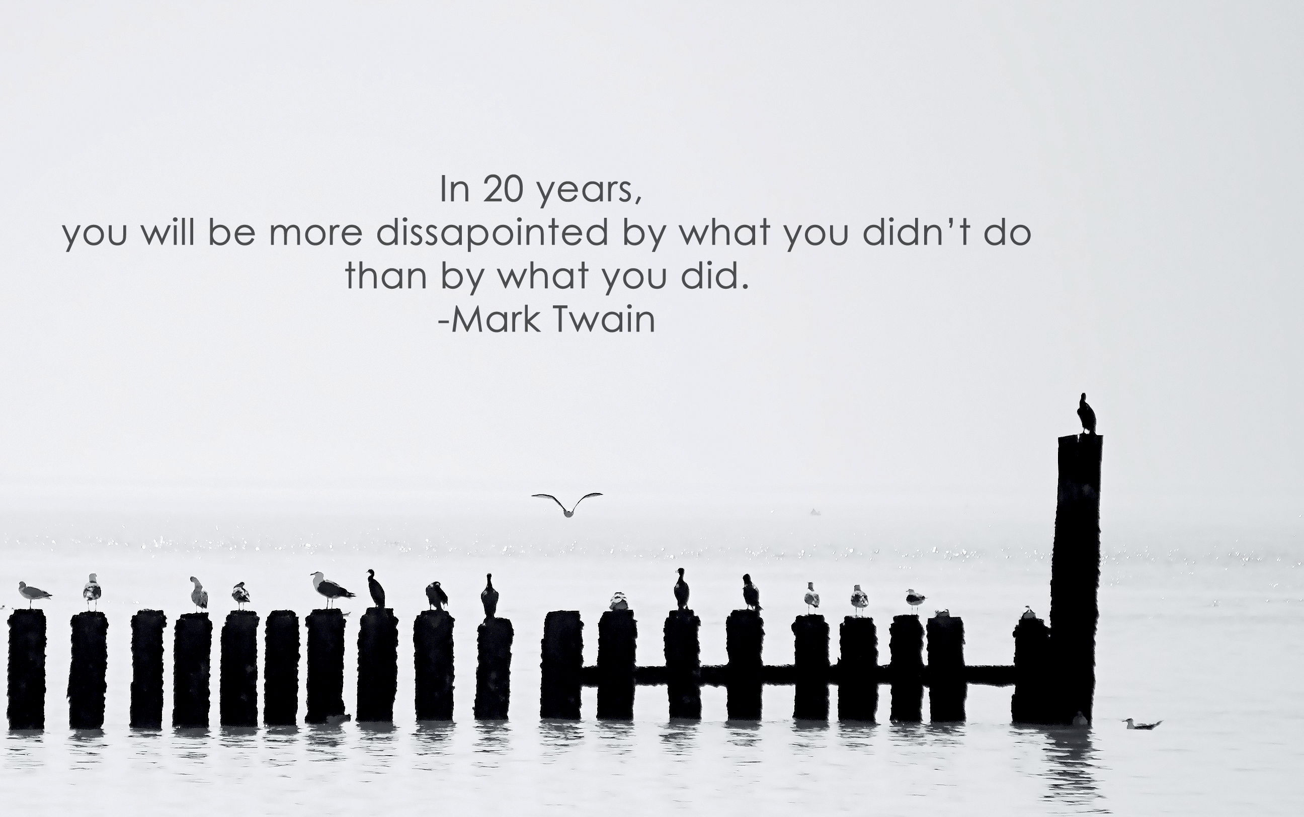 In 20 Years. You Will Be More Dissapointed by What You Didn't Do Than by What You Did ~ Love Quote