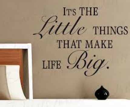 Its The Little Things That Things That Make Life Big ~ Joy Quote