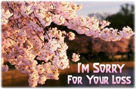 So Sorry Your Loss Quotes