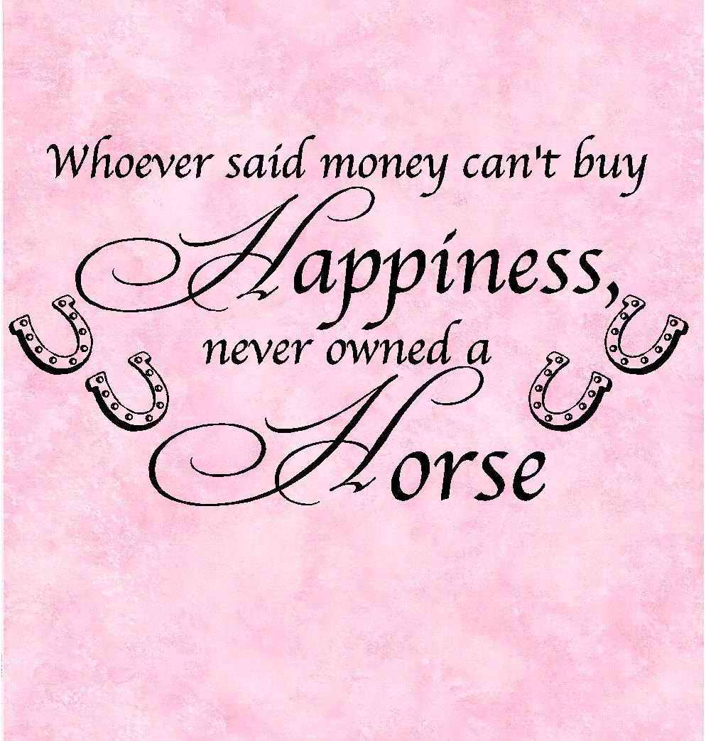 Cannot Said Whoever Happiness Buy Money