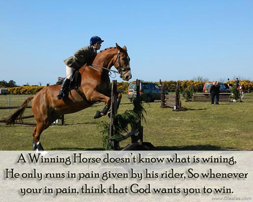 https://i2.wp.com/quotespictures.com/wp-content/uploads/2013/11/a-winning-horse-doesnt-know-what-is-winning-he-only-runs-in-pain-given-by-his-rider-so-whenever-your-is-pain-think-that-god-wants-you-to-win.jpg?w=696