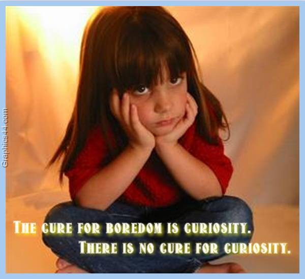 cure for boredom blog