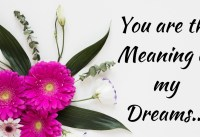 Love Poems and Love Quotes for a Wonderful Dream of