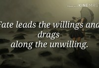 Inspiring Fate quotes