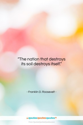 "Franklin D. Roosevelt quote: ""The nation that destroys its soil destroys…""- at QuotesQuotesQuotes.com"