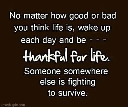 Be Thankful For Life Quote Life Lifequote Grateful Thankful... Famous Quotes  For Success   QuotesViral.net | Your Number One Source For Daily Quotes