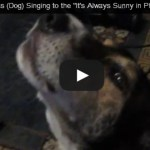 Mac the Dog Sings Along to the It's Always Sunny in Philadelphia Theme Song (VIDEO)